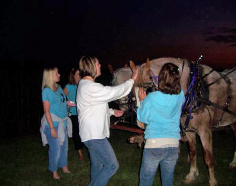 Girls petting the horses